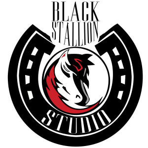 Black Stallion - Web Version